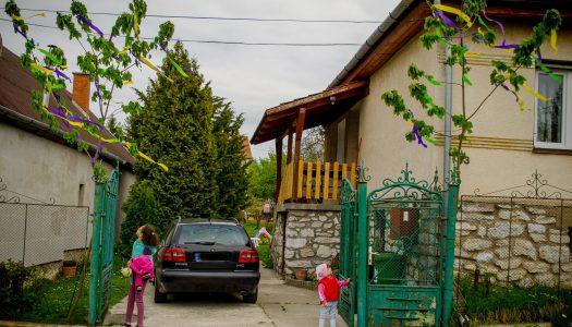 Fanninak és Zsófinak apukájuk állított májusfát – Bélapátfalván őrzik a hagyományt