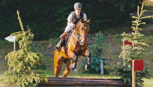 Díjugrató lovasverseny Gyöngyösön